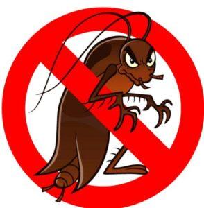 مكافحة حشرات بمكة , رش حشرات بمكة , شركة مكافحة حشرات بمكة المكرمة